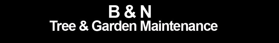 B & N Tree & Garden Maintenance
